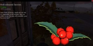 DayZ Red Berry Inspection