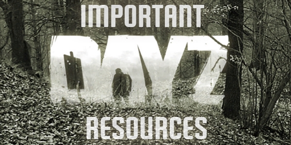 DayZ Game Resources